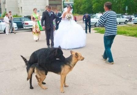 casamento-3-(2)