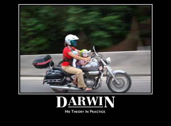 Motivational-Darwin
