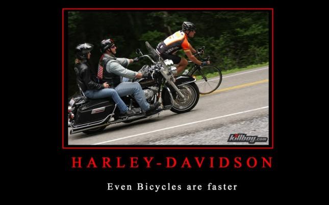 Motivational-Harley