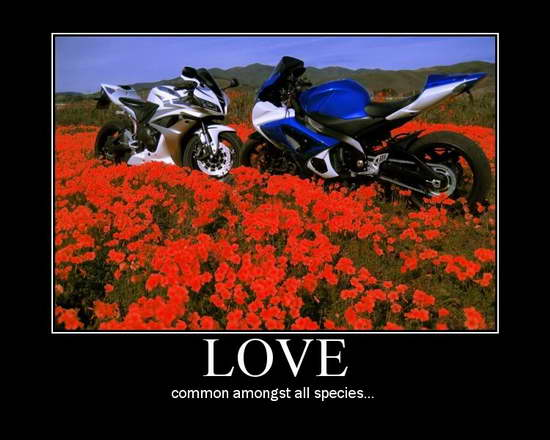 Mototivational-Motorcycle-Poster-39